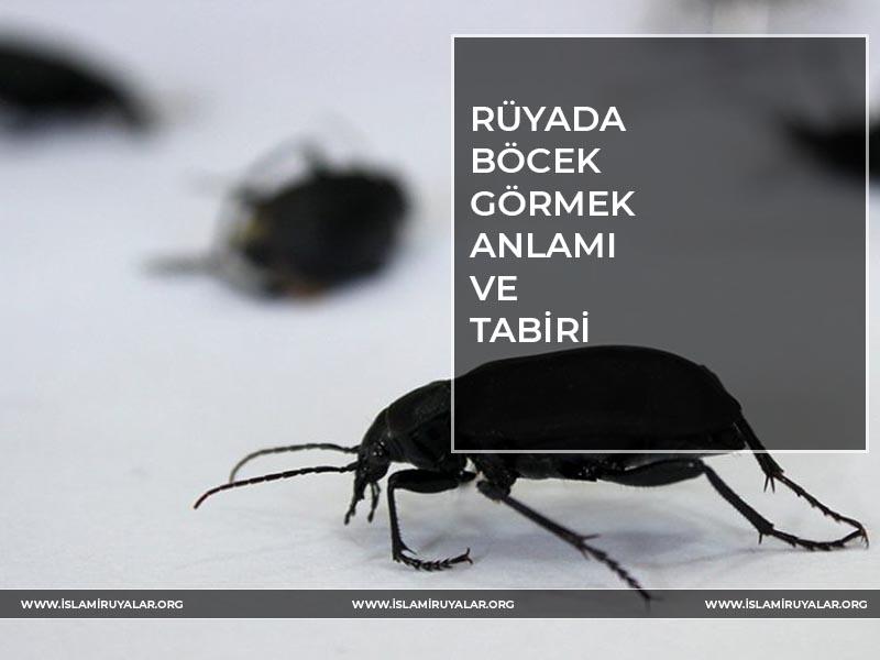 rüyada-böcek