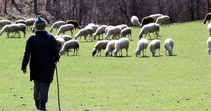 Rüyada Çoban Görmek